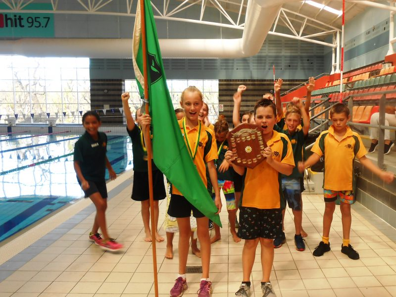Green Faction wins the 2018 swimming carnival.